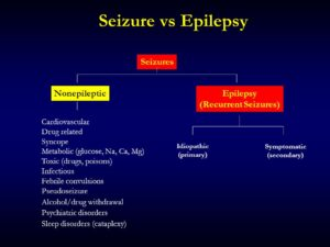 What does an absence seizure look like?